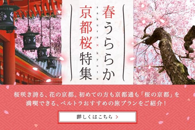 春うららか 京都桜特集