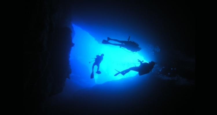 神秘的な海中世界へ
