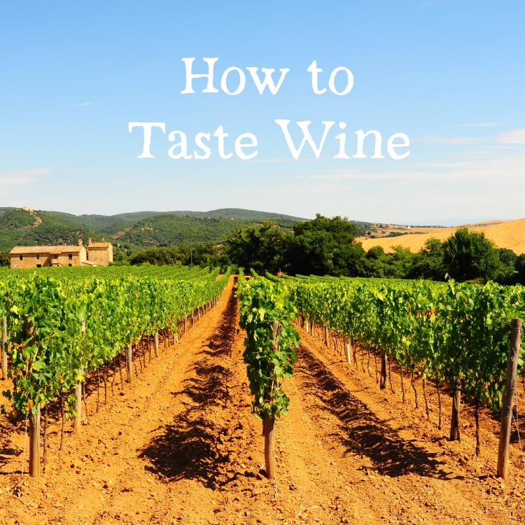 ワインを飲みに旅に出よう