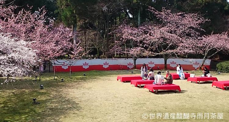 京の花見の舞台