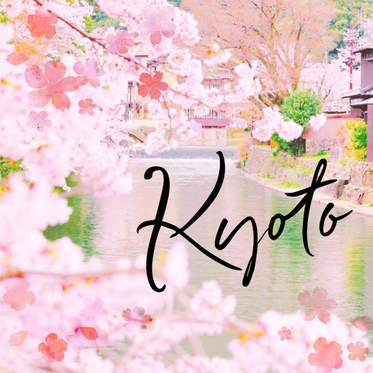 春うららか。桜咲き乱れる京都へ