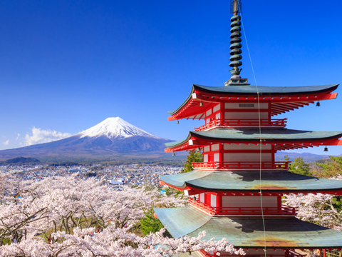 Check out tours and activites from Japan, Asia.
