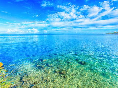 冲绳本岛冲绳的旅游活动。