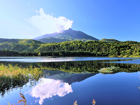 Check out tours and activites from Wakkanai/ Rishiri/ Rebun, Hokkaido.
