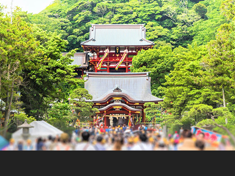 Check out tours and activites from Kamakura/ Shonan, Kanagawa(Hakone).