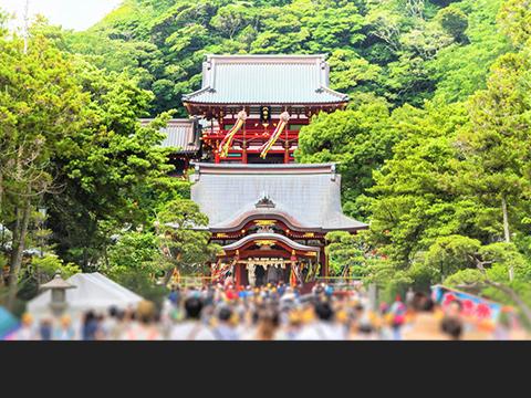 Check out tours and activites from Kamakura/ Shonan, Kanagawa(Hakone).