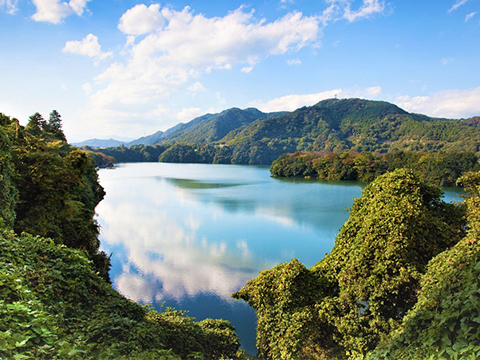 神奈川(横浜・箱根) 相模原 出発の観光・オプショナルツアーはこちらから。