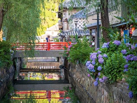 静岡 伊豆・下田・白浜 出発の観光・オプショナルツアーはこちらから。