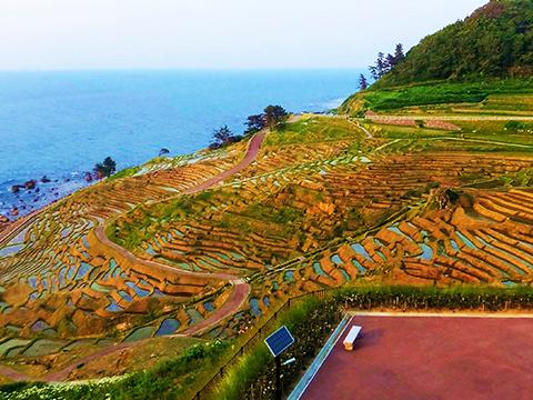 石川 能登・能登半島 出発の観光・オプショナルツアーはこちらから。