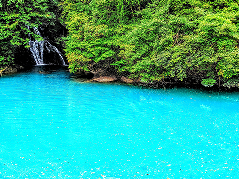 群馬 四万・吾妻・川原湯 出発の観光・オプショナルツアーはこちらから。