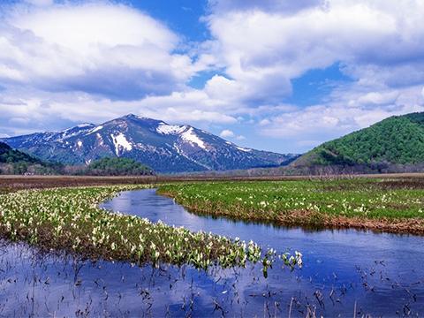 群馬 沼田・老神・尾瀬 出発の観光・オプショナルツアーはこちらから。