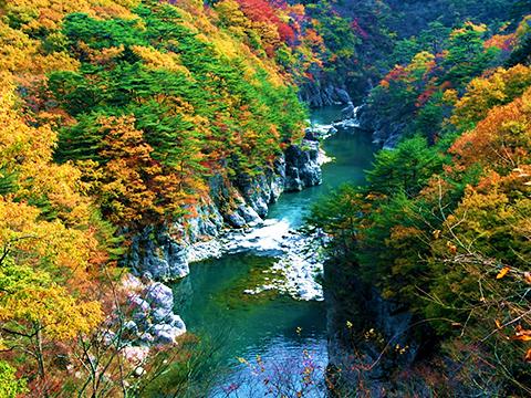 栃木 鬼怒川 出発の観光・オプショナルツアーはこちらから。