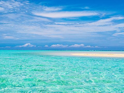 奄美大島 与論島 出発の観光・オプショナルツアーはこちらから。