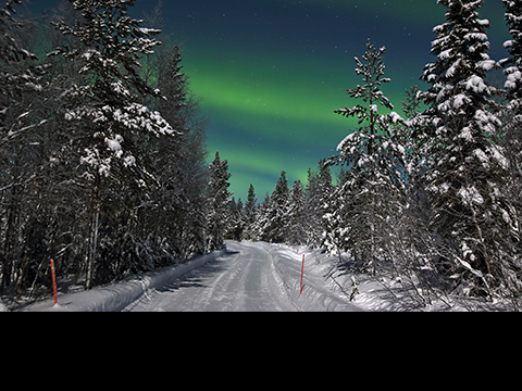 Check out tours and activites from Yllas, Finland.