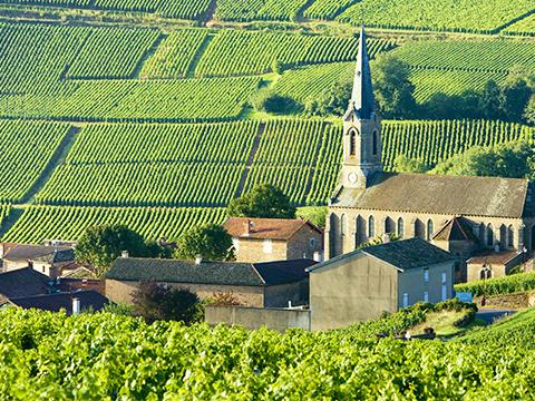 フランス ブルゴーニュ 出発の観光・オプショナルツアーはこちらから。