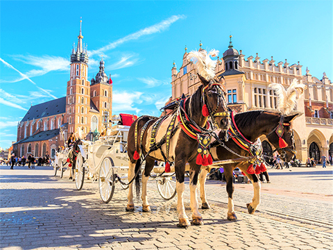 Tours and activites from Poland, Europe.