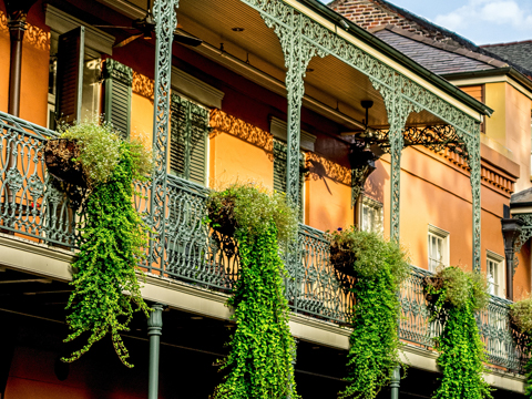 Tours and activites from New Orleans, USA.