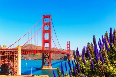 Tours and activites from San Francisco, USA.