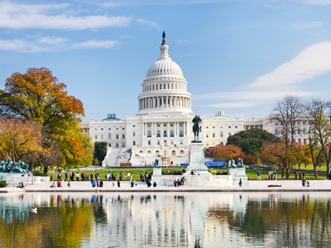 Tours and activites from Washington D.C., USA.