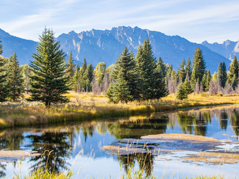 Check out tours and activites from Wyoming, USA.