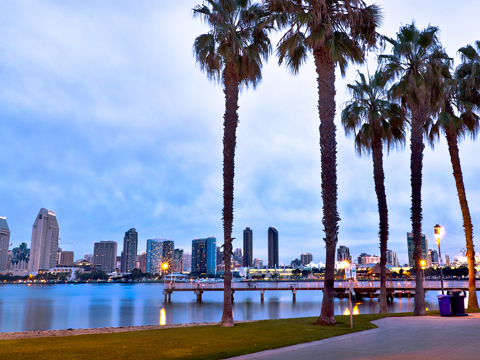 Check out tours and activites from San Diego, USA.