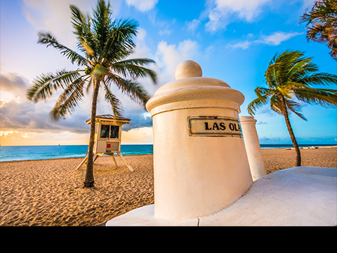 Check out tours and activites from Fort Lauderdale, USA.