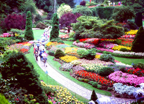 Check out tours and activites from Victoria, Canada.