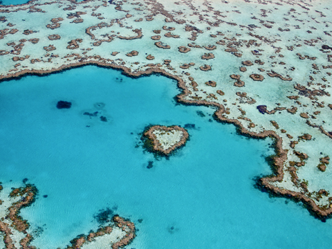 Check out tours and activites from Whitsunday Islands, Australia.