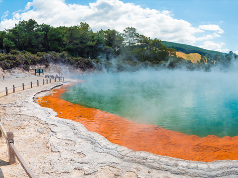 Check out tours and activites from Rotorua, New Zealand.
