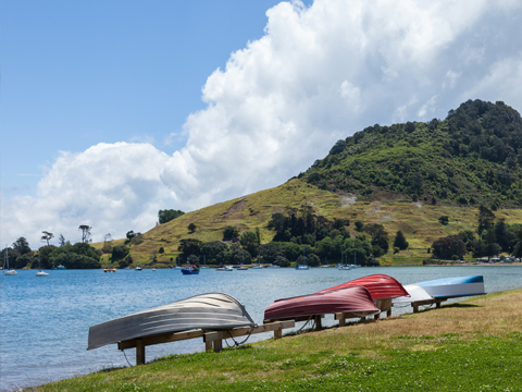 Check out tours and activites from Tauranga, New Zealand.