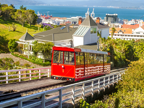 Check out tours and activites from Wellington, New Zealand.
