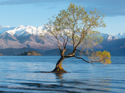 Check out tours and activites from Wanaka, New Zealand.