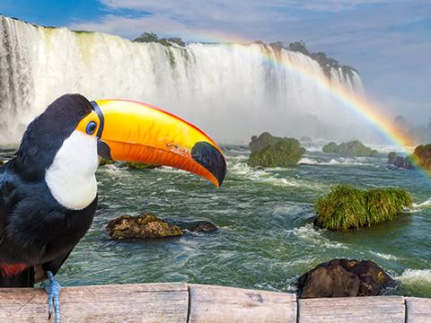 ブラジル イグアス 現地オプショナルツアー