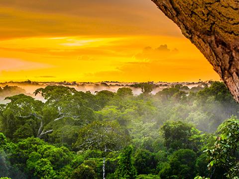 ブラジル ブラジルその他都市 出発の観光・オプショナルツアーはこちらから。